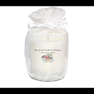 Sensational Soy Candle